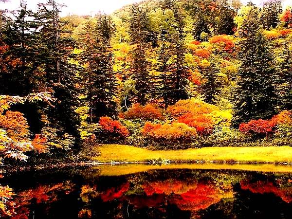 上川町を巡る旅 大雪山高原温泉と高原沼群を巡る
