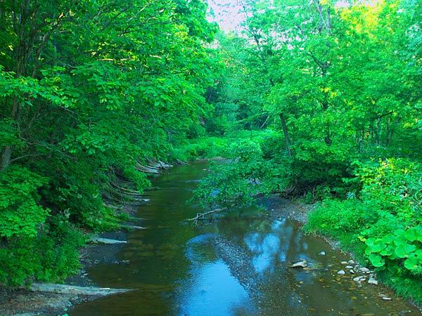 初山別川 初山別川はその名前のイメージ『アイヌ語で滝のある川』とは違い全体に穏や... 初山別村